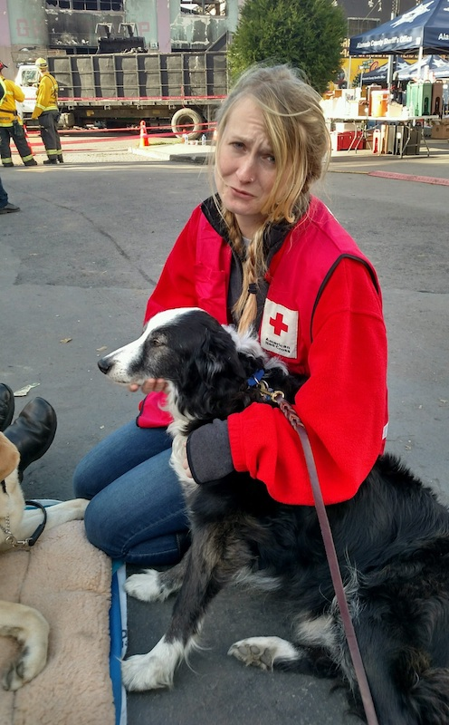 Comfort Dogs at the Oakland Warehouse Fire - San Lorenzo Dog
